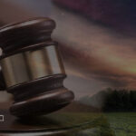 Уголовная ответственность за экологические преступления